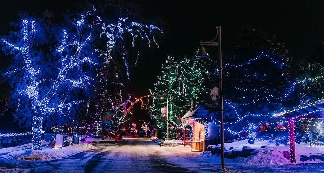 Tickets are now available for this year's stunning ZooLights display