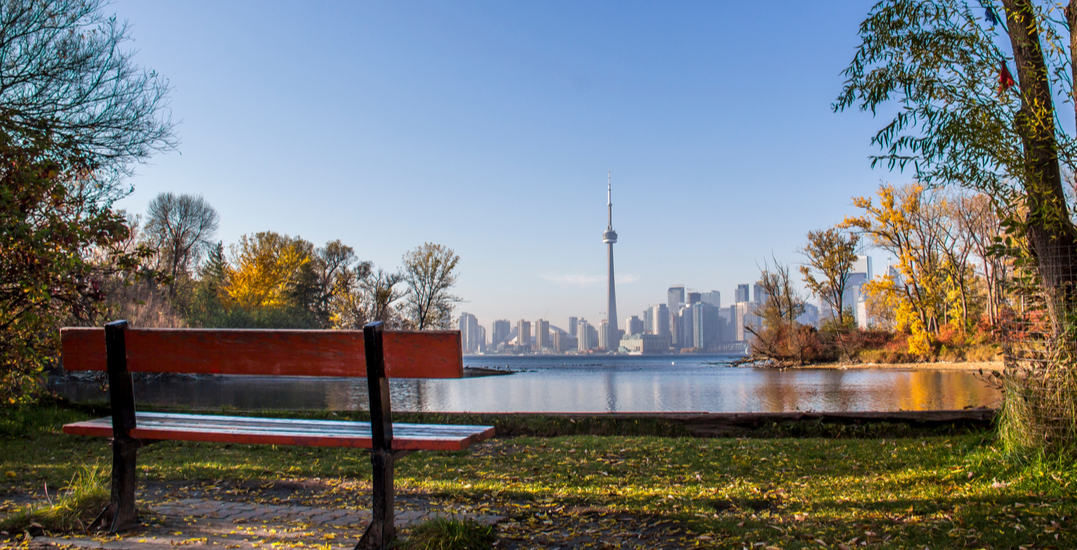 10 distanced things to do in Toronto this week: October 19 to 25