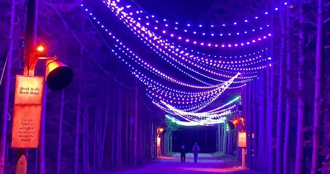 There's an interactive night walk experience with a magical light installation in Ontario
