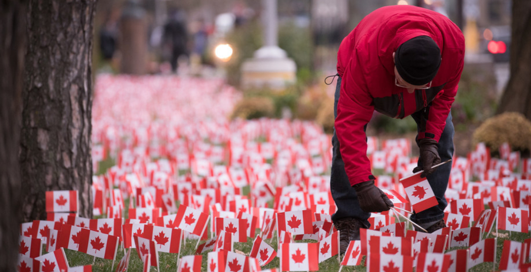 37,500 flags are being planted to honour veterans on Remembrance Day