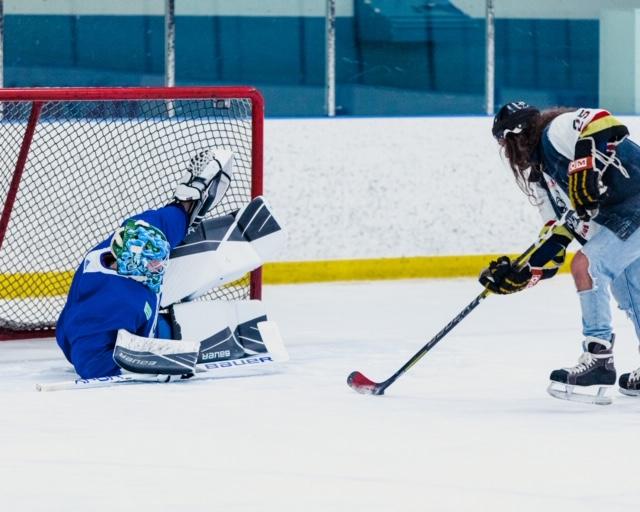 elias pettersson goalie