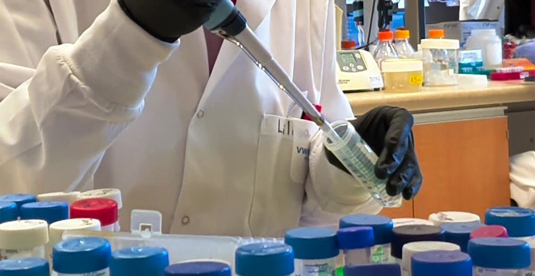 Edmonton company awarded $5M for COVID-19 vaccine clinical trials