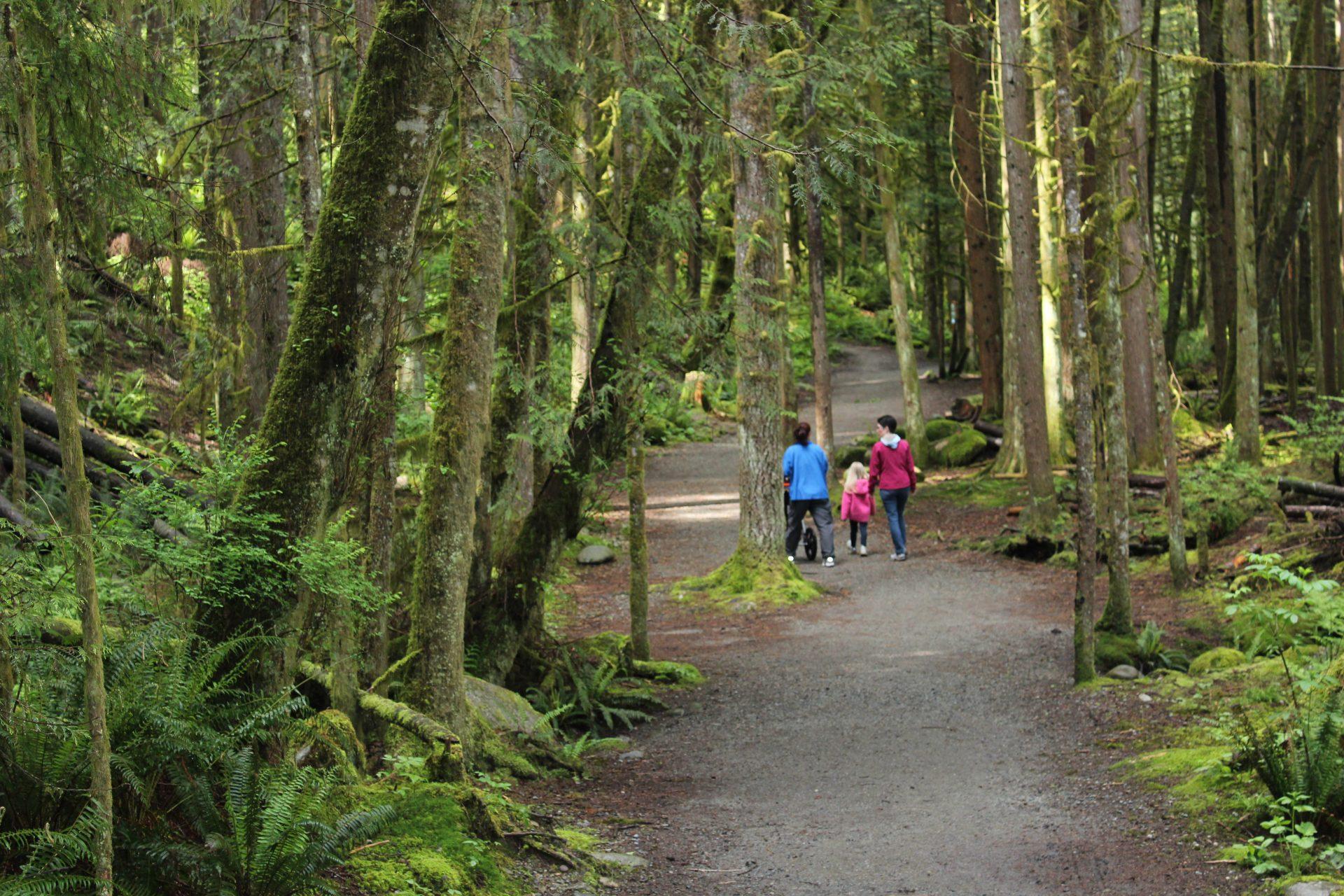 north shore hikes