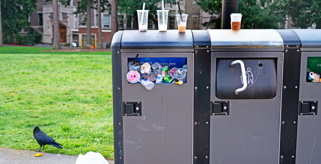 City of Seattle to invest in cleaning efforts at parks and public spaces
