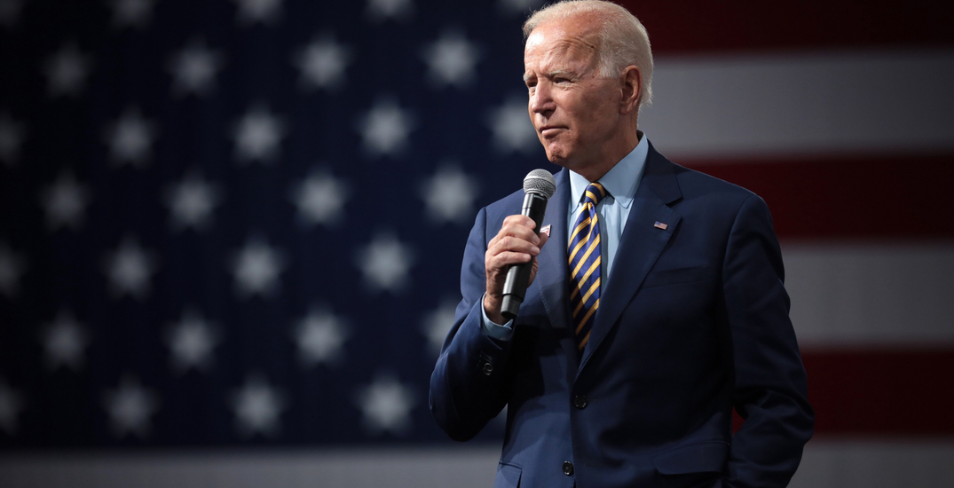 Americans take to the streets to celebrate as Biden win projected (VIDEO)