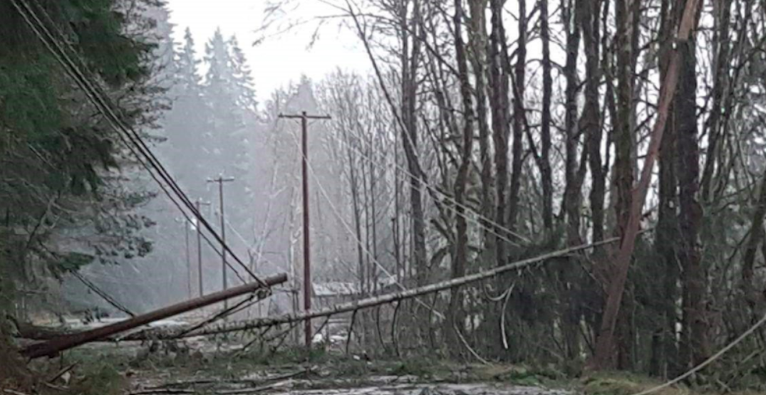 Here's what Tuesday's windstorm looked like in Metro Vancouver (VIDEOS)