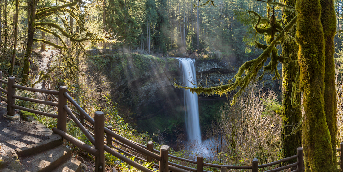 8 stunning hiking trails to check out around Portland