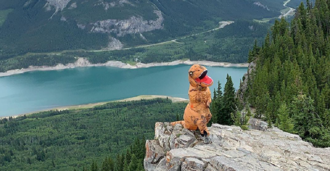 Canadian man hiking Rocky Mountains in dinosaur costume for charity