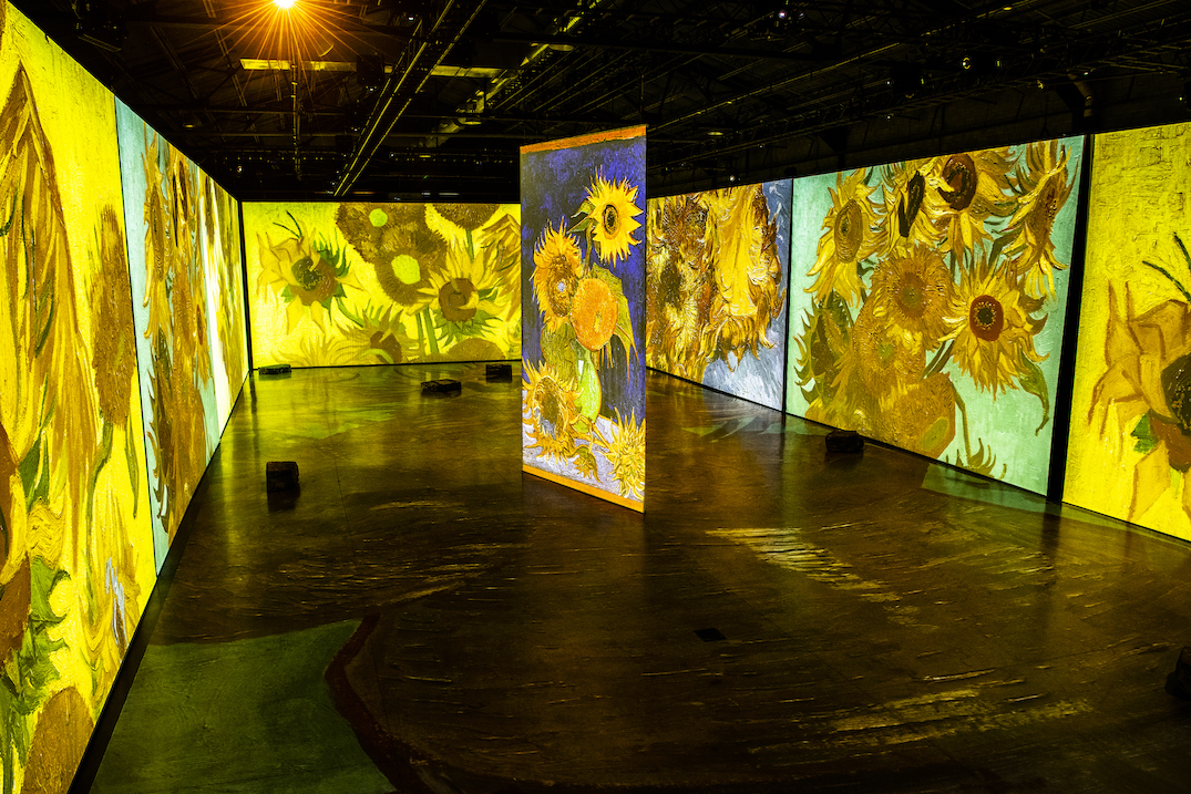 imagine van gogh exhibition projection 2020