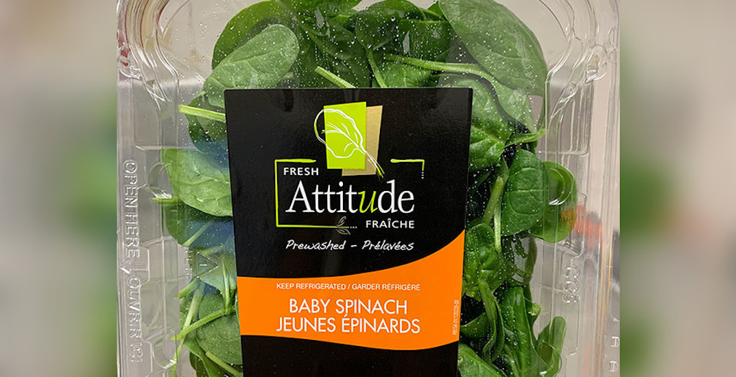 Baby spinach recalled due to possible salmonella contamination