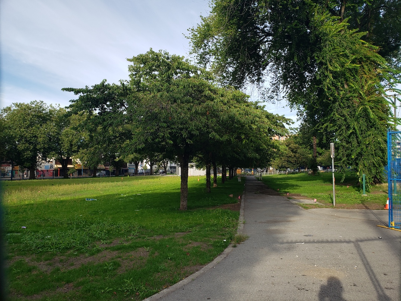 oppenheimer park downtown eastside
