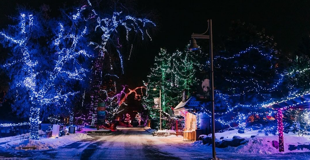 11 photos of this year's spectacular ZooLights display