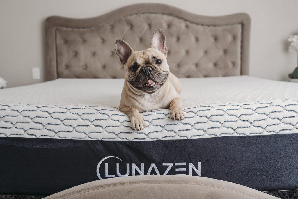 Lunazen 2