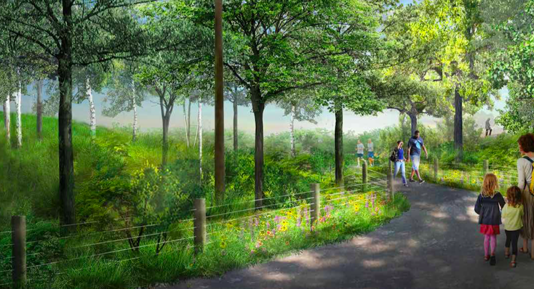 Forest swings, trails part of massive new waterfront park plan in Toronto