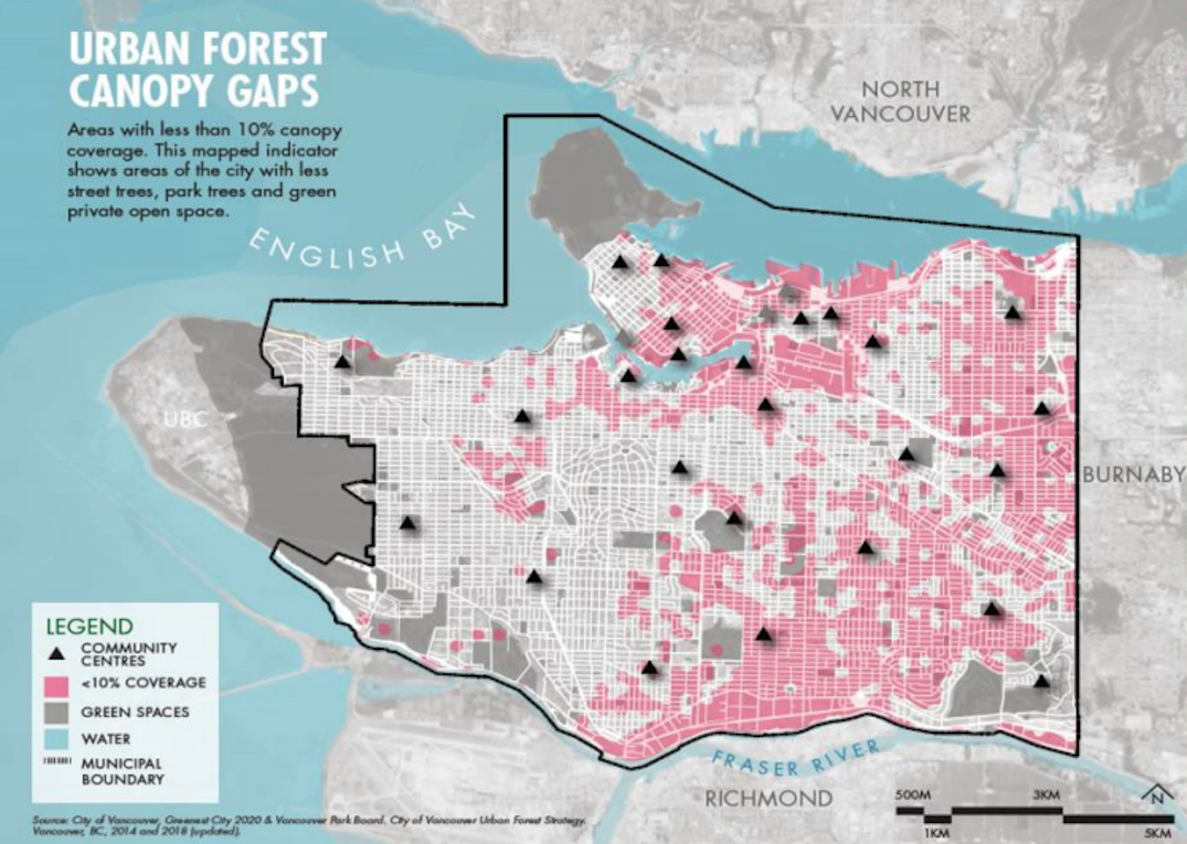 vancouver urban forest tree canopy