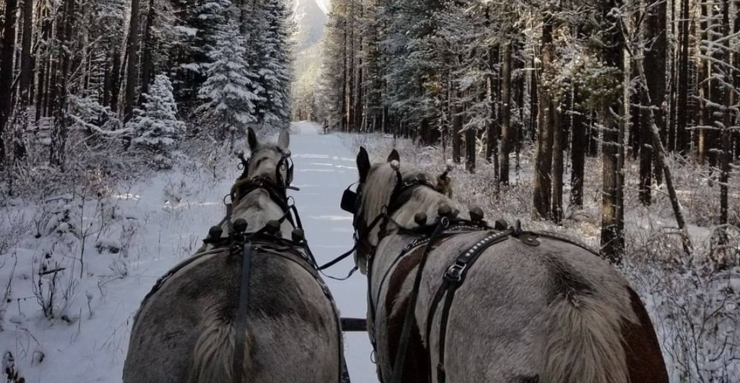 You can go for a sleigh ride through the Rockies at this stunning ranch