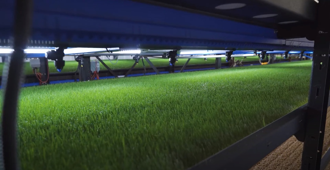 Vertical farming machines made in BC land major investment deals