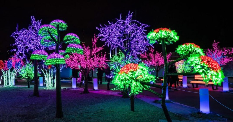 Ontario lockdown rules ban Christmas light drive-thrus