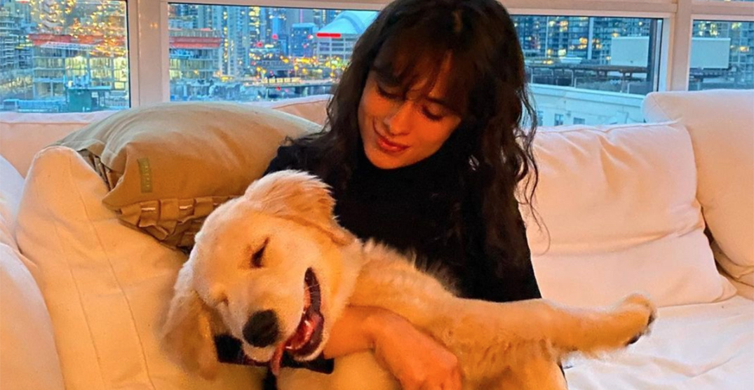 Shawn Mendes and Camila Cabello hang with adorable puppy in Toronto