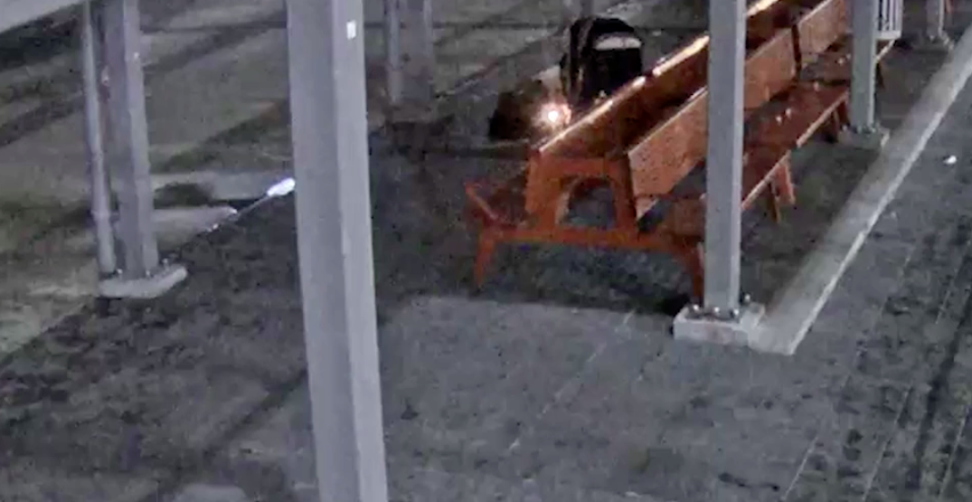 VPD seek suspect who set fire to homeless woman's blankets while she slept