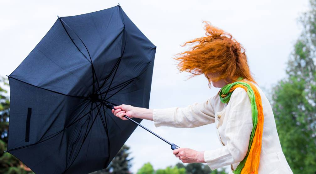 Environment Canada issues wind warning for Calgary