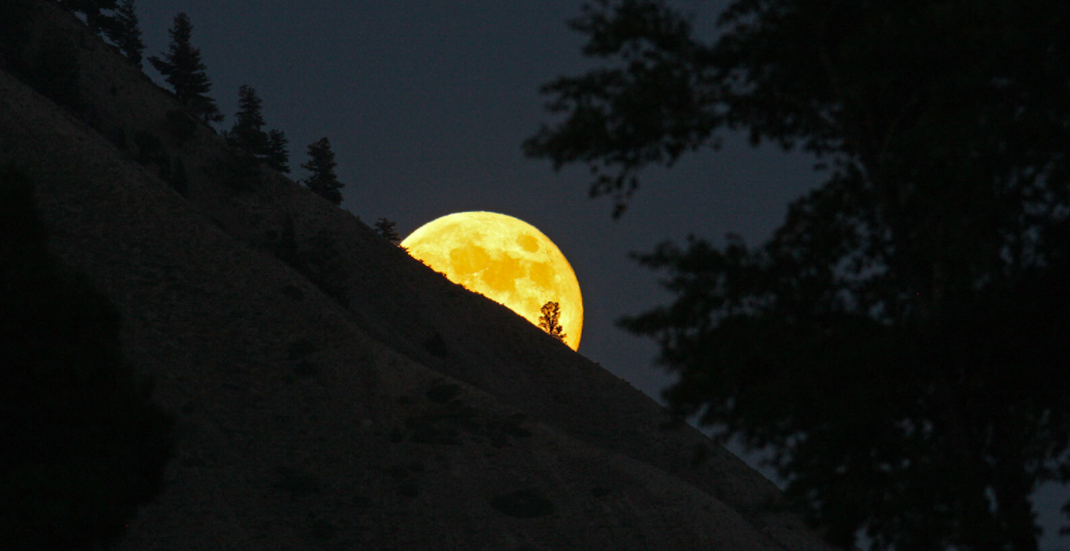Rare wolf moon to light up American skies tomorrow