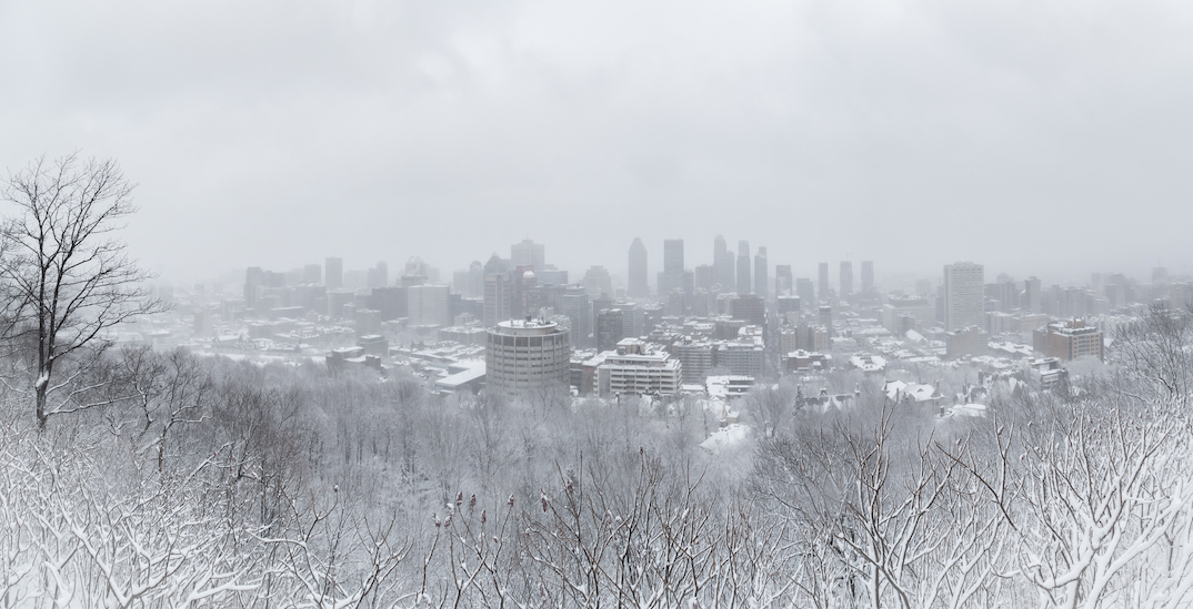 20 shots of what Montreal looks like during Tuesday's snowstorm (PHOTOS)
