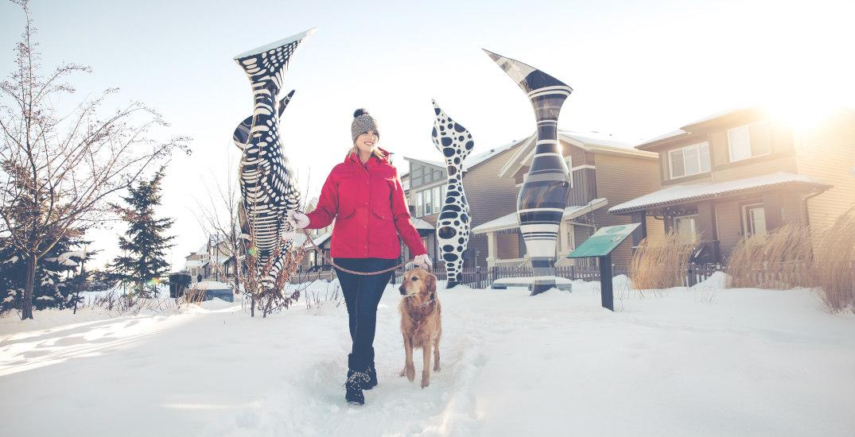 Edmonton developer talks building communities that inspire healthy living