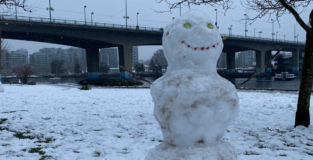 Vancouver had so much fun in this weekend's snow (PHOTOS/VIDEOS)