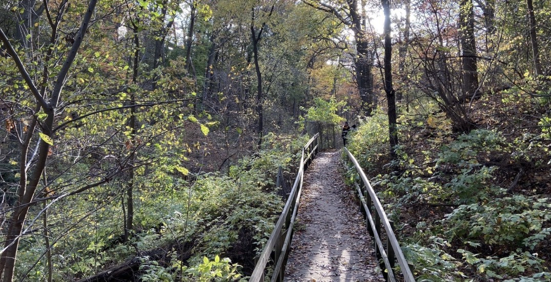 12 trails for spring hiking in and around Toronto