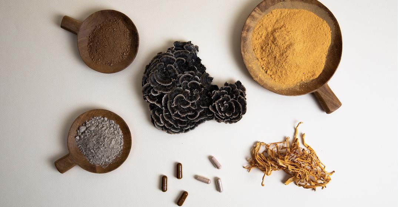 Vancouver-based magic mushrooms wellness company completes $20.7 million IPO