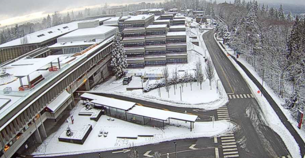 It's snow joke: Metro Vancouver woke up to snow this morning (PHOTOS)