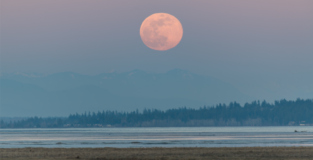 A full Worm Moon will be illuminating Canadian skies this month