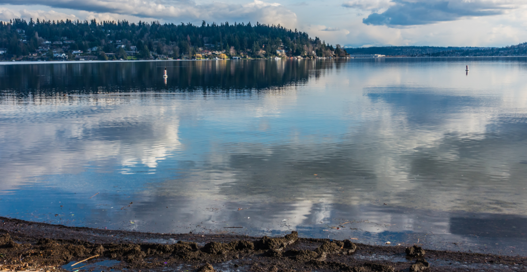 12 places in Seattle perfect for your springtime strolls