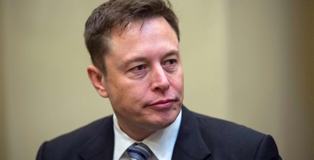 Elon Musk turns down $1 million offer on his NFT about NFTs