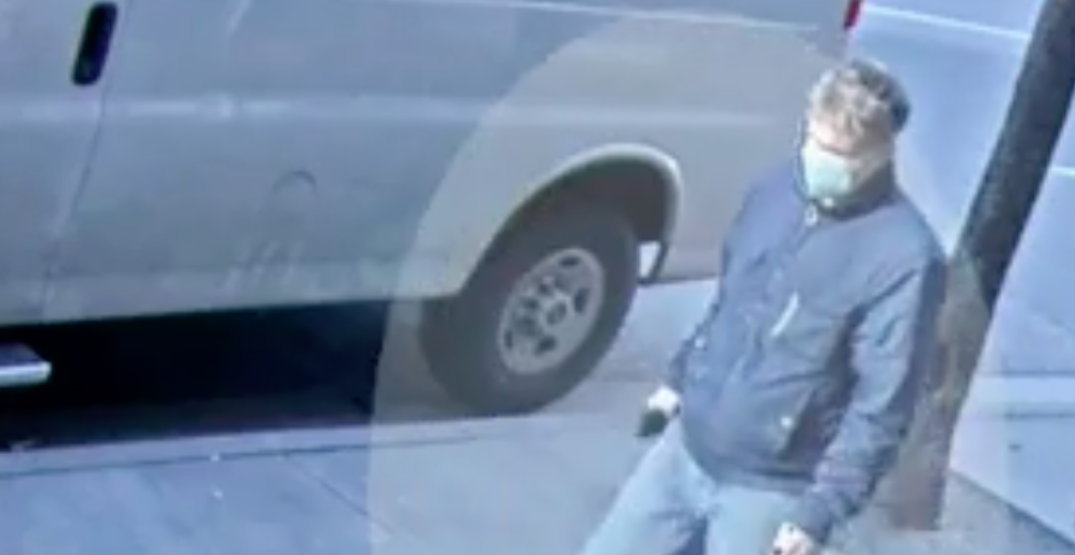 VPD seek suspect after woman allegedly punched in face while walking her dog