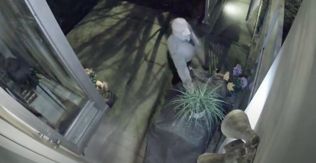 Person steals potted plant from front porch of Vancouver home (VIDEO)