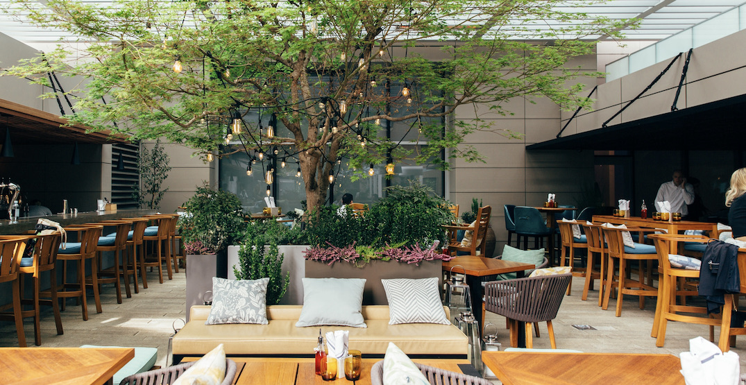 Reflections: The Garden Terrace patio set to open this week