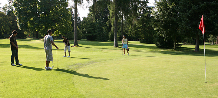 stanley park pitch putt