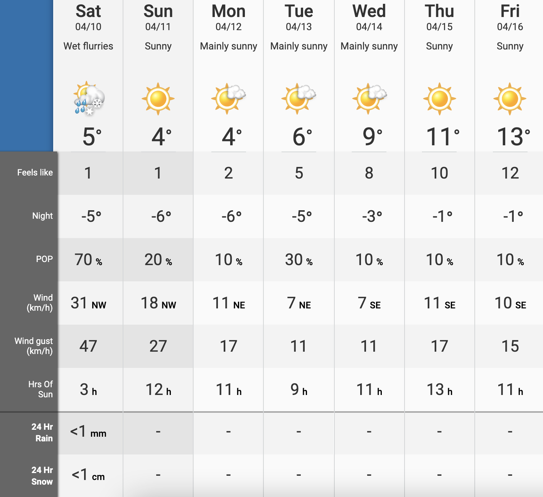 Edmonton temperatures