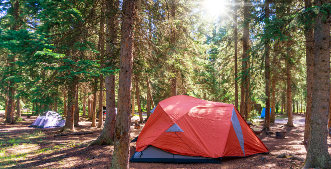Albertans may soon have to pay fees for camping on Crown land