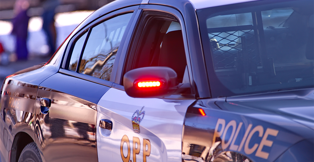 Police charged six people for illegally gathering at cottage country rental