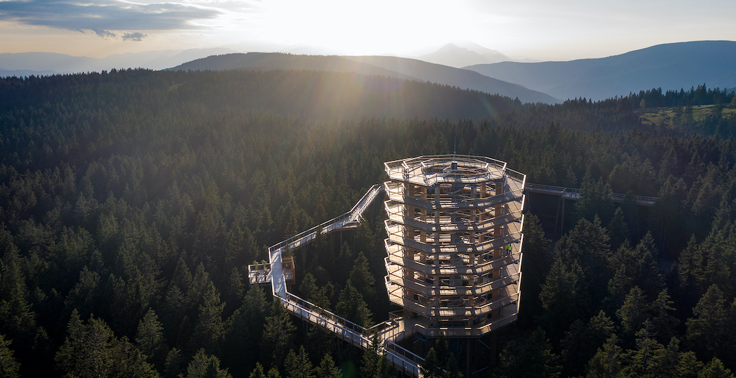 A giant treetop walk spiral staircase is coming to the Laurentians