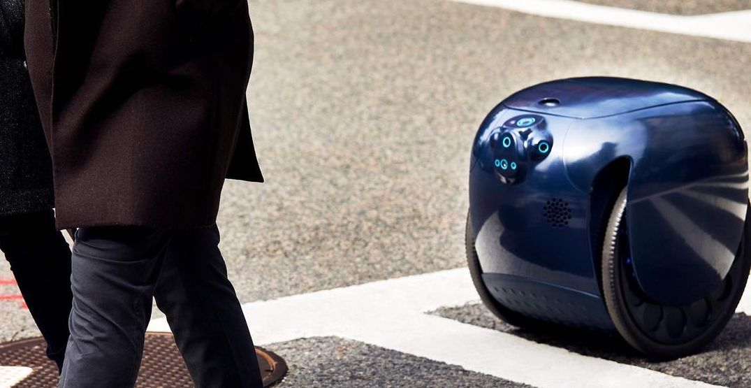 A company is offering robots to Seattleites to encourage more walking