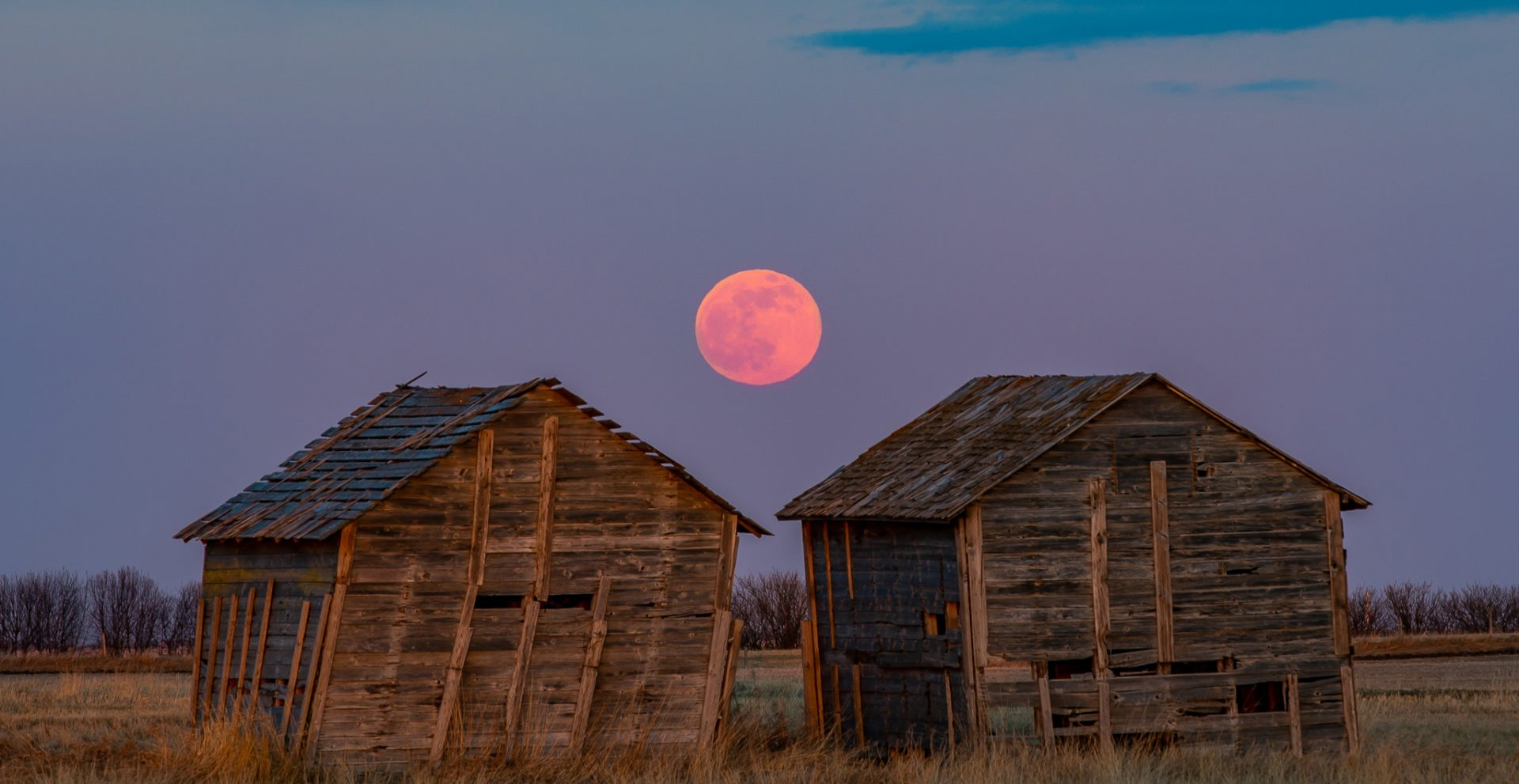 15 photos of the Super Pink Moon in Canadian skies last night