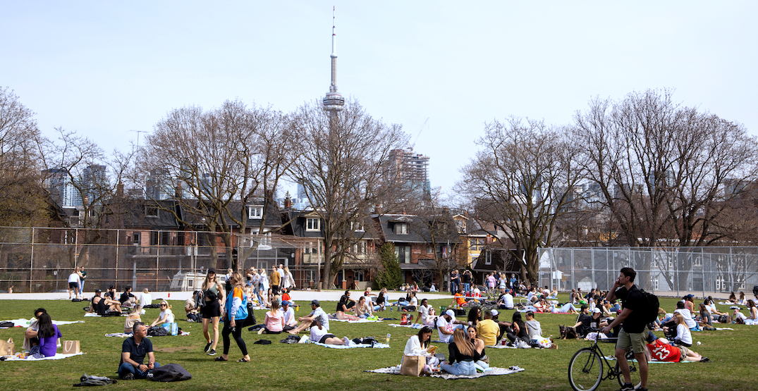 Drinking alcohol in Toronto parks won't be a priority for police this summer
