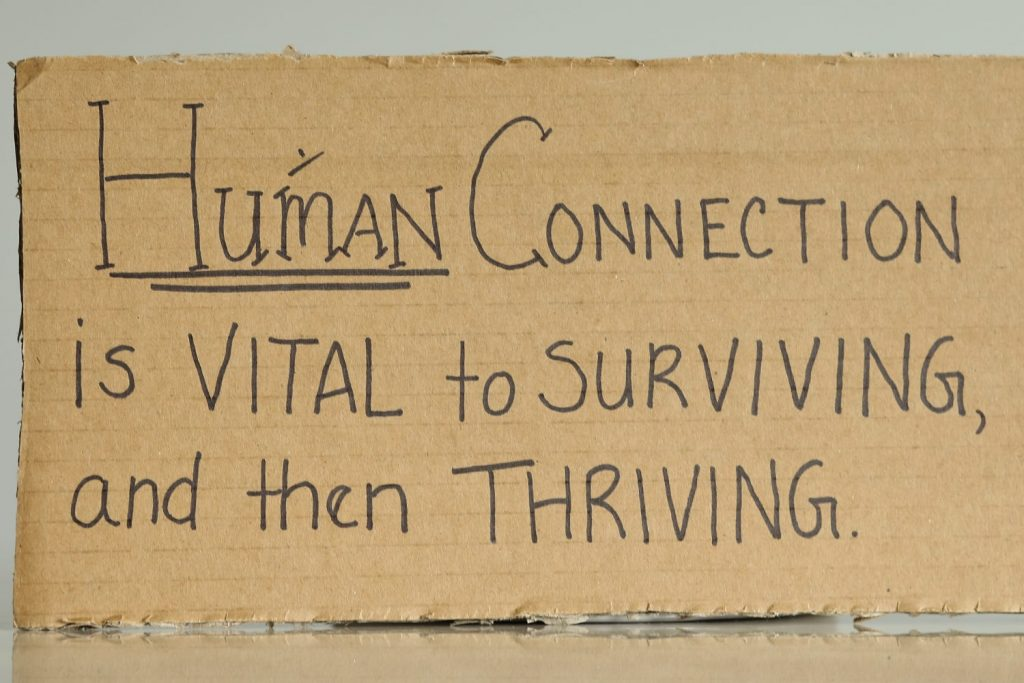 Cardboard exhibit (The Cardboard Project)