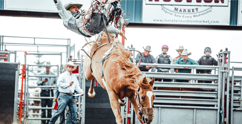 "Alberta ""anti-lockdown"" rodeo rally organizers charged"