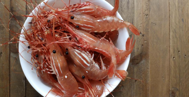 BC Spot Prawn season: How to buy, prep, and eat