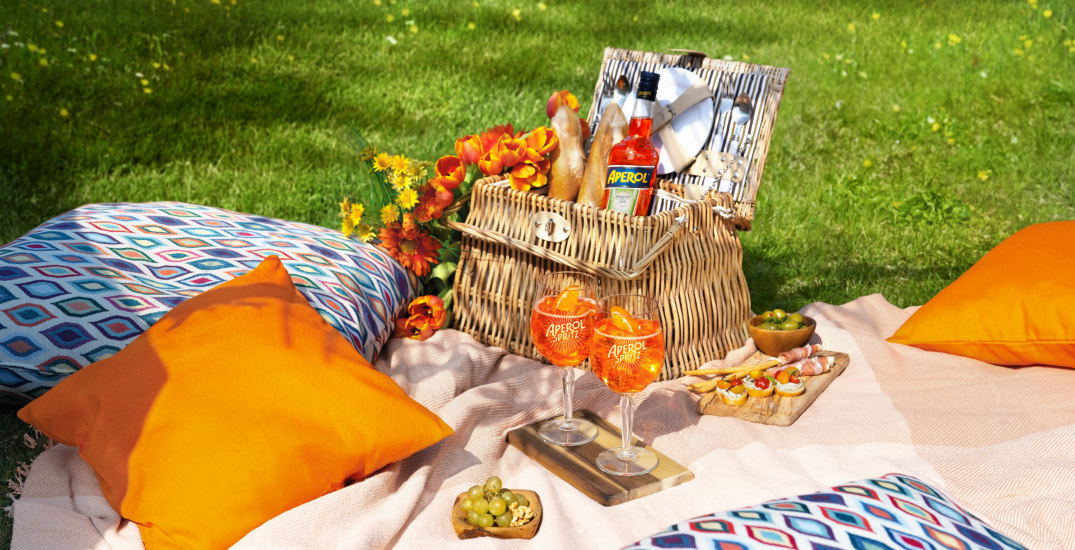 5 Metro Vancouver parks for picnics with a view this summer